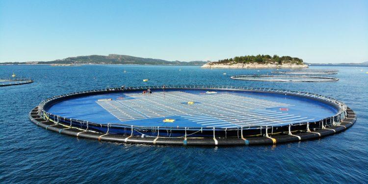 fotovoltaica flotante