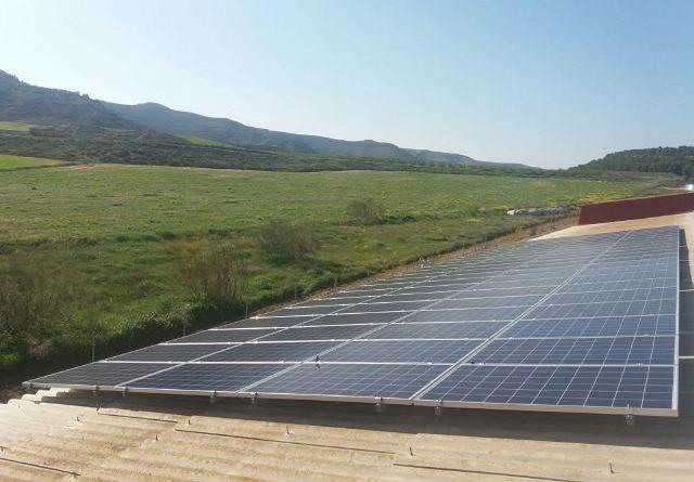 subasta solar
